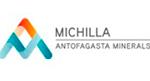 Logo Michilla